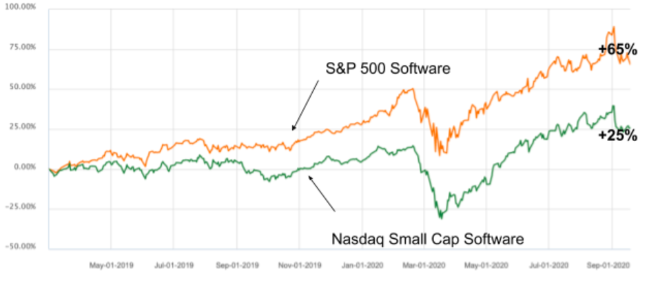 Software microcap companies stock performance 2020